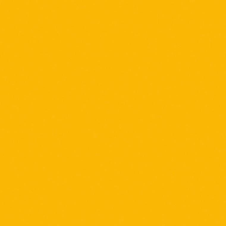 Smoothbark Hickory Swatch Image