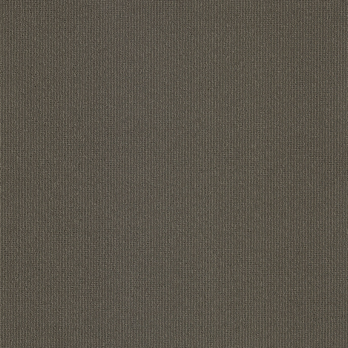 Amtico International: Elemental Solids Grey