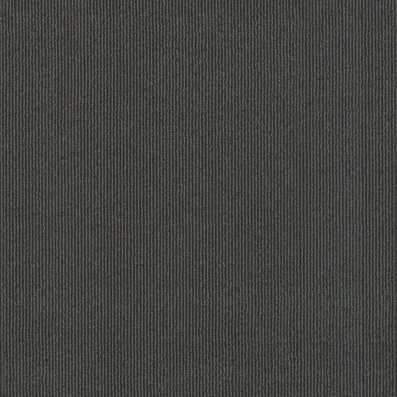 Elemental Solids Cool Grey Swatch Image