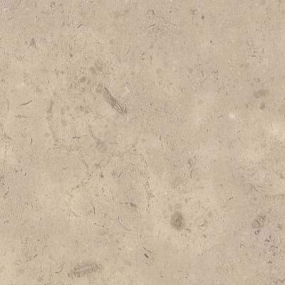Fossil Limestone Swatch Image