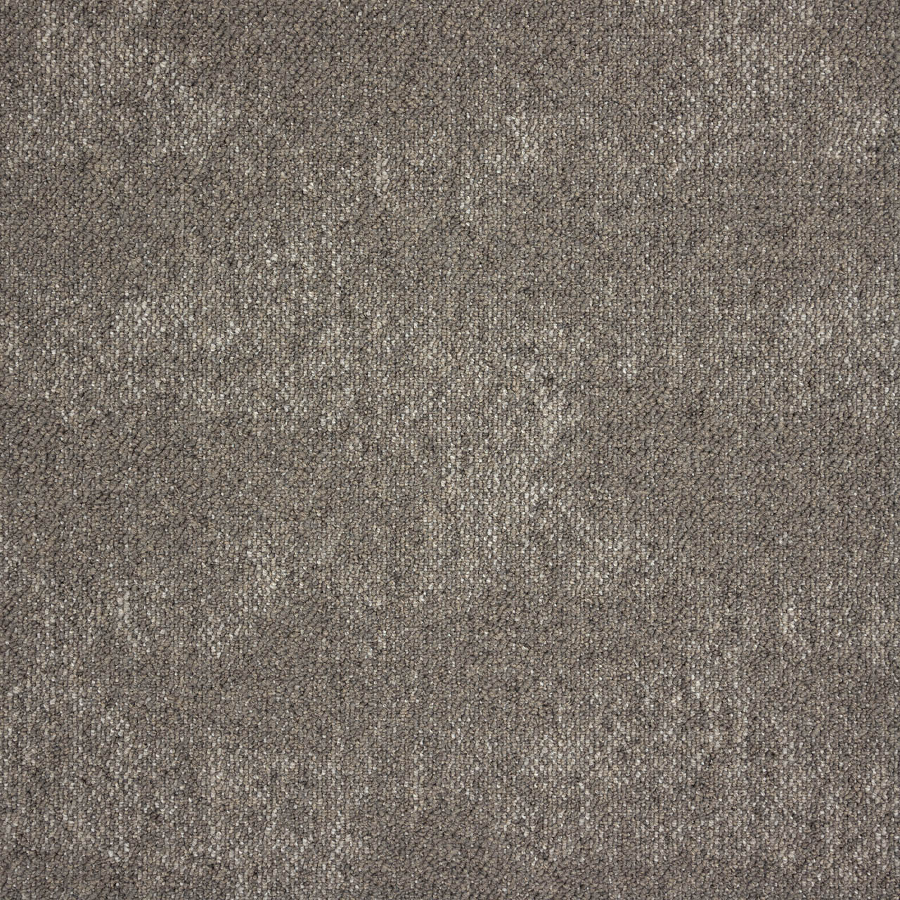Amtico International: Drift Willow