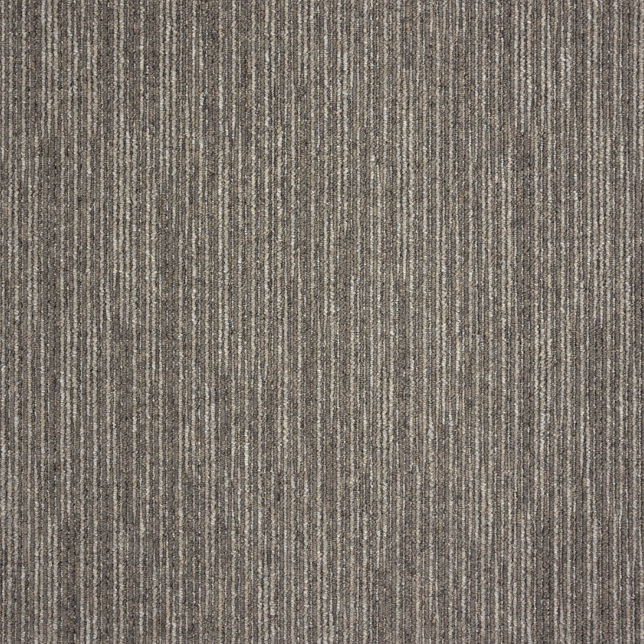 Amtico International: Drift Willow Stripe