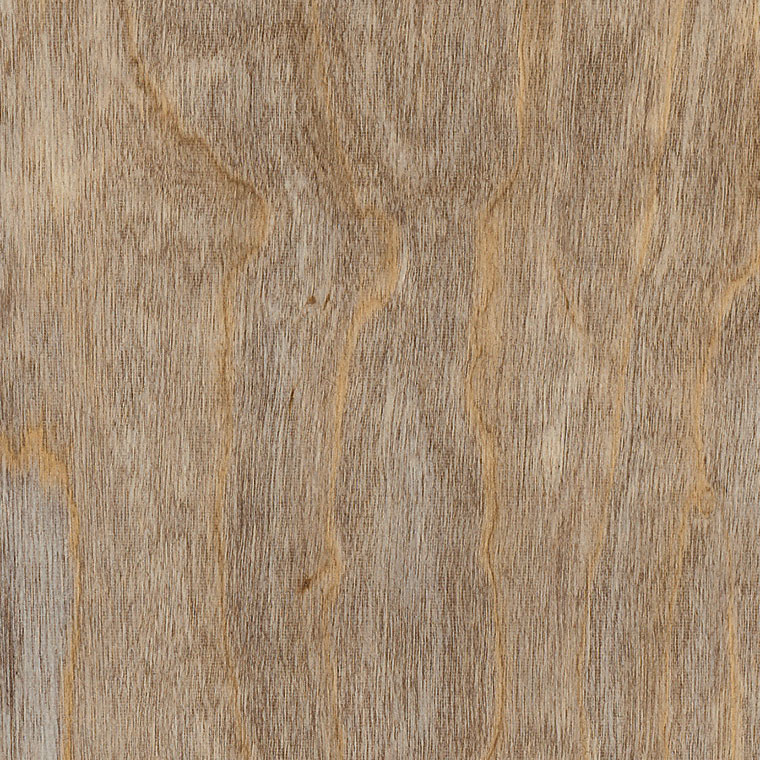 Amtico International: Bleached Elm